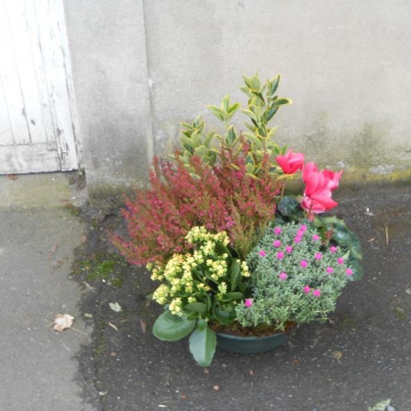 Coupe de plantes extérieurs pour fleurir les cimetiéres et jardins